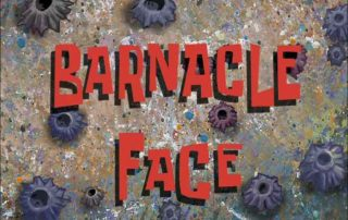 Barnacle Skin, Seborrheic Keratosis